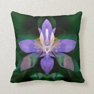 USA, Colorado, Boulder County Throw Pillow