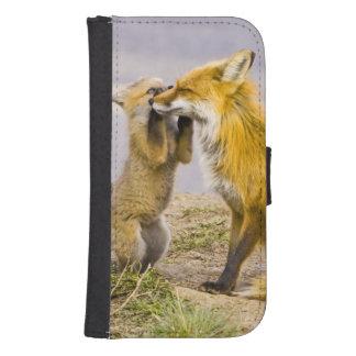 USA, Colorado, Breckenridge. Red fox mother 2 Phone Wallet Cases