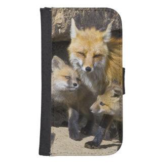 USA, Colorado, Breckenridge. Red fox mother 4 Galaxy S4 Wallets