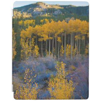 Be sure to check out Zazzle's great collection of Father's Day gifts, like these iPad covers.
