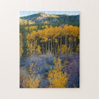 USA, Colorado. Bright Yellow Aspens in Rockies Puzzle
