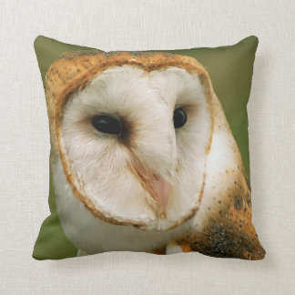 USA, Colorado, Broomfield. Barn owl Throw Pillow