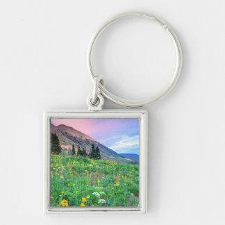 USA, Colorado, Crested Butte. Landscape 2 Keychain