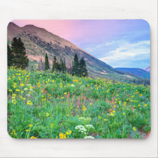 USA, Colorado, Crested Butte. Landscape 2 Mouse Pad