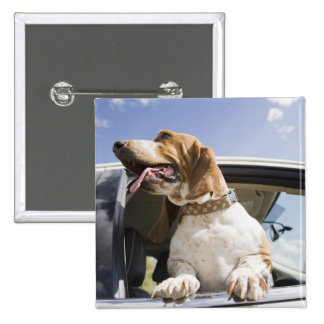 USA, Colorado, dog looking through car window 2 2 Inch Square Button
