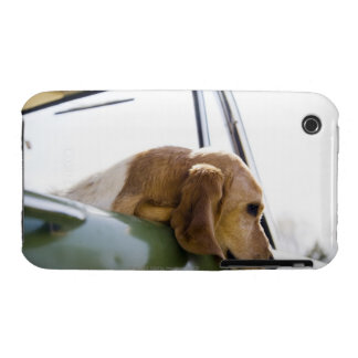 USA, Colorado, dog looking through car window iPhone 3 Case-Mate Cases
