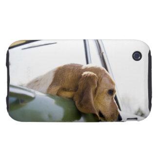 USA, Colorado, dog looking through car window iPhone 3 Tough Case