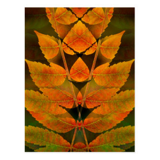 USA, Colorado, Lafayette. Autumn sumac montage Postcard