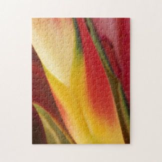 USA, Colorado, Lafayette, heliconia close-up Jigsaw Puzzle