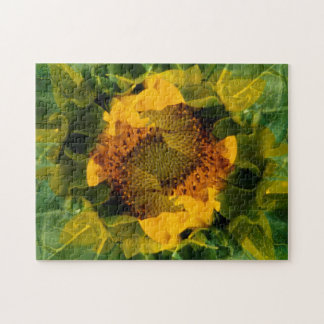 USA, Colorado, Lafayette. Sunflower montage Jigsaw Puzzle