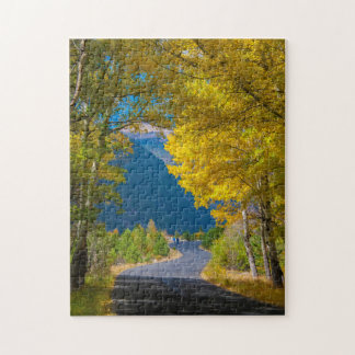 USA, Colorado. Road Flanked By Aspens Puzzles