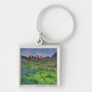 USA, Colorado. Sunrise On Wildflowers Silver-Colored Square Keychain