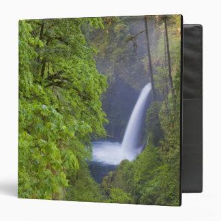 USA, Eagle Creek, Columbia Gorge, Oregon. 2 Binders