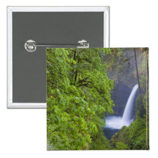 USA Eagle Creek Columbia Gorge Oregon 2 Pinback Buttons
