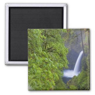 USA, Eagle Creek, Columbia Gorge, Oregon. 2 Magnet
