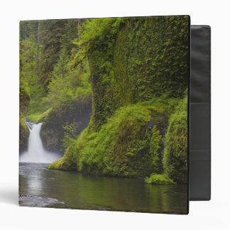 USA, Eagle Creek, Columbia Gorge, Oregon. 3 3 Ring Binder