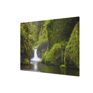 USA, Eagle Creek, Columbia Gorge, Oregon. 3 Gallery Wrap Canvas