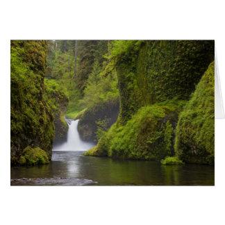 USA, Eagle Creek, Columbia Gorge, Oregon. 3 Greeting Card