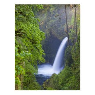 USA, Eagle Creek, Columbia Gorge, Oregon. Postcard