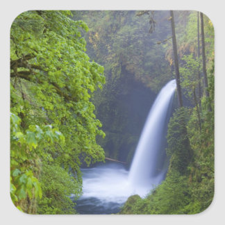 USA, Eagle Creek, Columbia Gorge, Oregon. Square Sticker