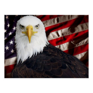 USA Eagle Patriotic Poster