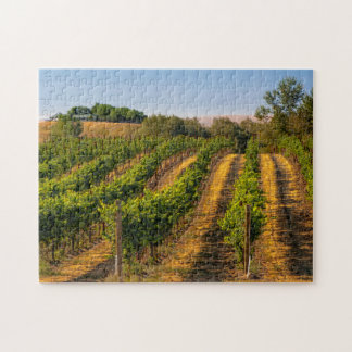 USA, Eastern Washington, Walla Walla Vineyards Puzzles