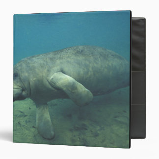 USA, FL, Manatee 3 Ring Binder