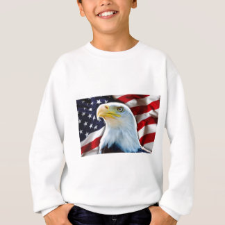 USA FLAG EAGLE SWEATSHIRT