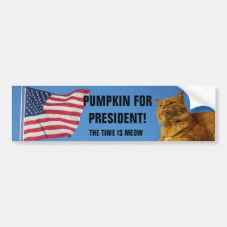 USA Flag Pumpkin Cat For President Bumper Sticker
