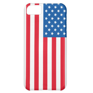 USA Flag stars and stripes Case For iPhone 5C