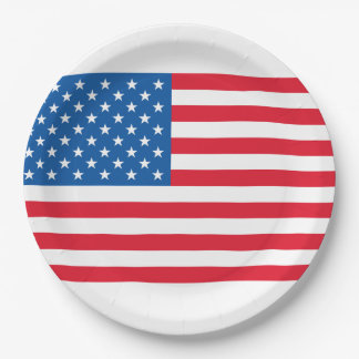 USA Flag stars and stripes Paper Plate