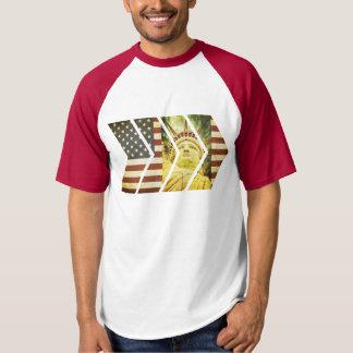 USA Flag Statue of Liberty Chevrons T-shirt