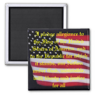 USA flag with pledge magnet