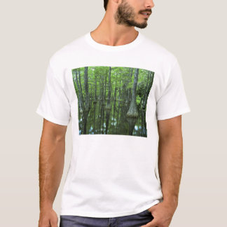 USA, Florida, Apalachicola National Forest, Bald T-Shirt