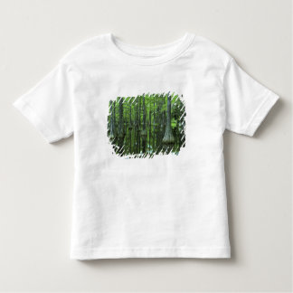 USA, Florida, Apalachicola National Forest, Bald Toddler T-shirt