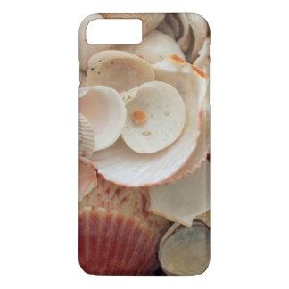 USA, Florida. Close Up Of Shells On Santa Rosa iPhone 7 Plus Case