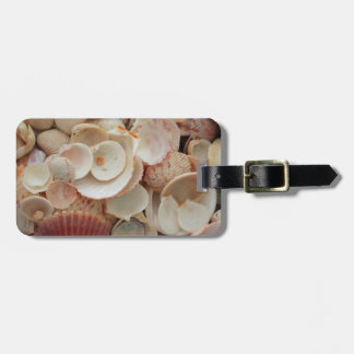 USA, Florida. Close Up Of Shells On Santa Rosa Luggage Tag