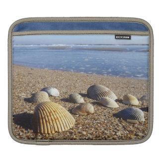 USA, Florida, Coastal Sea Shells Sleeve For iPads