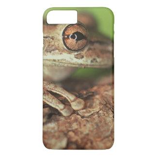 USA, Florida, Cuban Tree Frog. iPhone 7 Plus Case
