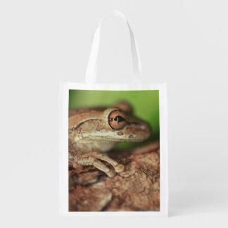 USA, Florida, Cuban Tree Frog. Grocery Bag