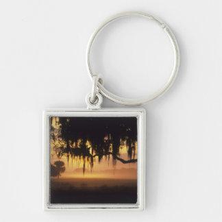 USA, Florida, Lake Kissimmee. Sunrise silhouette Silver-Colored Square Keychain