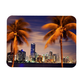 USA, Florida, Miami skyline at dusk Magnet