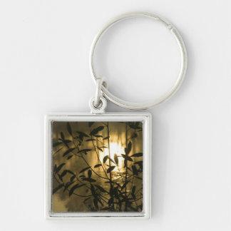 USA, Georgia, Callaway Gardens, Sunrise Silver-Colored Square Keychain