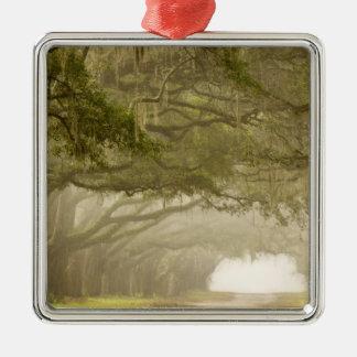 USA, Georgia, Savannah, An oak lined drive in Metal Ornament