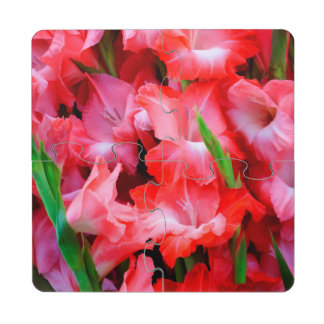 USA, Georgia, Savannah, Bouquet Of Gladiolus Drink Coaster Puzzle