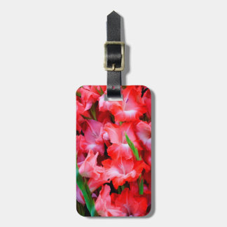 USA, Georgia, Savannah, Bouquet Of Gladiolus Luggage Tag