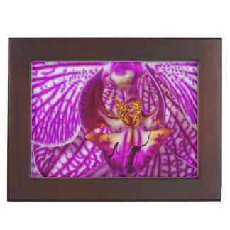 USA, Georgia, Savannah, Close-Up Of Orchid Memory Box
