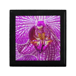 USA, Georgia, Savannah, Close-Up Of Orchid Trinket Box
