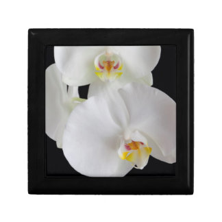 USA, Georgia, Savannah, Cluster Of Orchids Trinket Boxes