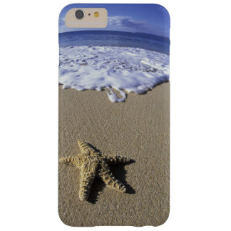 USA, Hawaii, Maui, Makena Beach, Starfish and Barely There iPhone 6 Plus Case